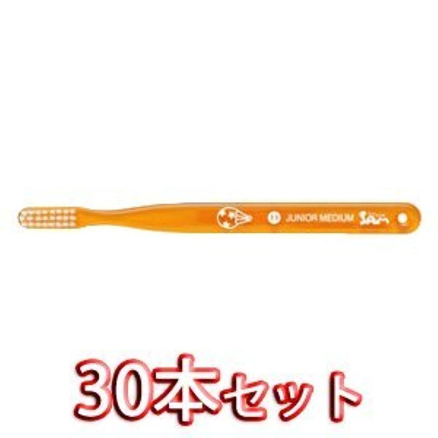 アプローチに慣れささいなサムフレンドベーシック 歯ブラシ 30本入 11