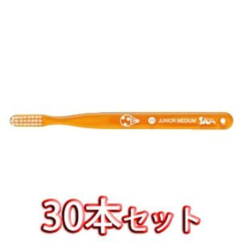 サムフレンドベーシック 歯ブラシ 30本入 11