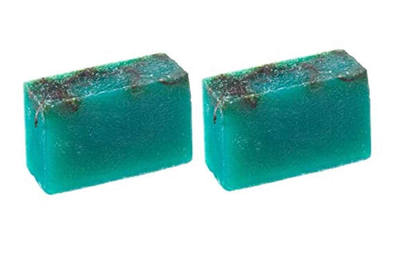 同行する合金オレンジLUSH ラッシュ シーベジタブル(100g)×2個セット フレッシュなライムの後にラベンダーの優しい香りソープ