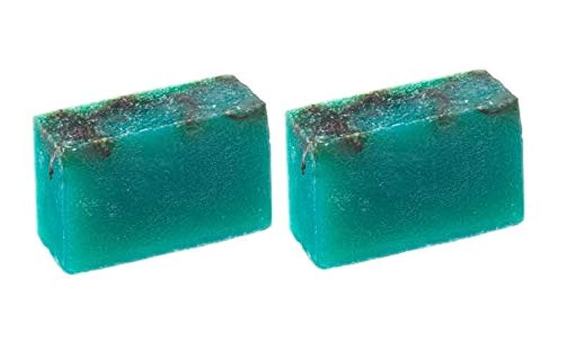 満足させる水世界的にLUSH ラッシュ シーベジタブル(100g)×2個セット フレッシュなライムの後にラベンダーの優しい香りソープ
