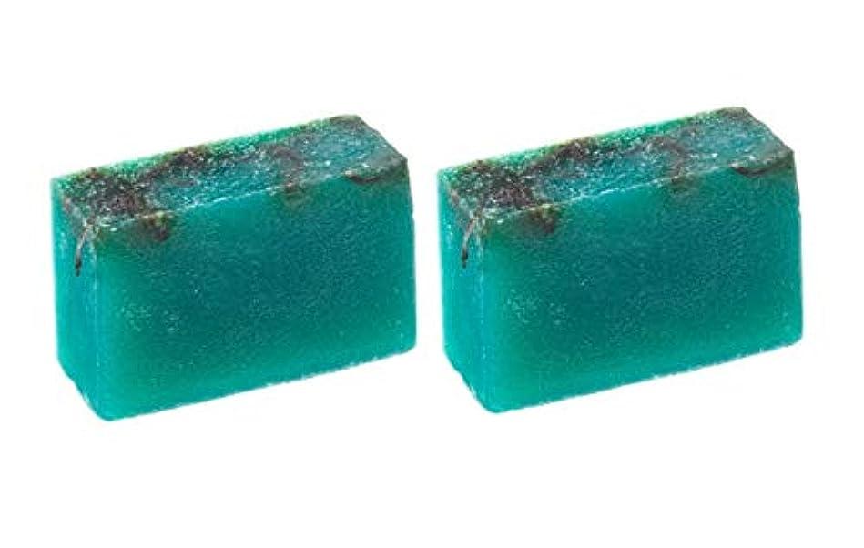 差別化するオフセットボーダーLUSH ラッシュ シーベジタブル(100g)×2個セット フレッシュなライムの後にラベンダーの優しい香りソープ