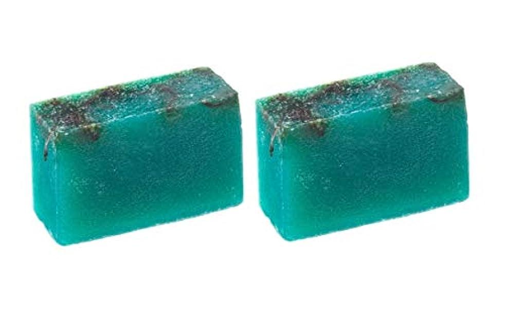 先住民前置詞一般LUSH ラッシュ シーベジタブル(100g)×2個セット フレッシュなライムの後にラベンダーの優しい香りソープ
