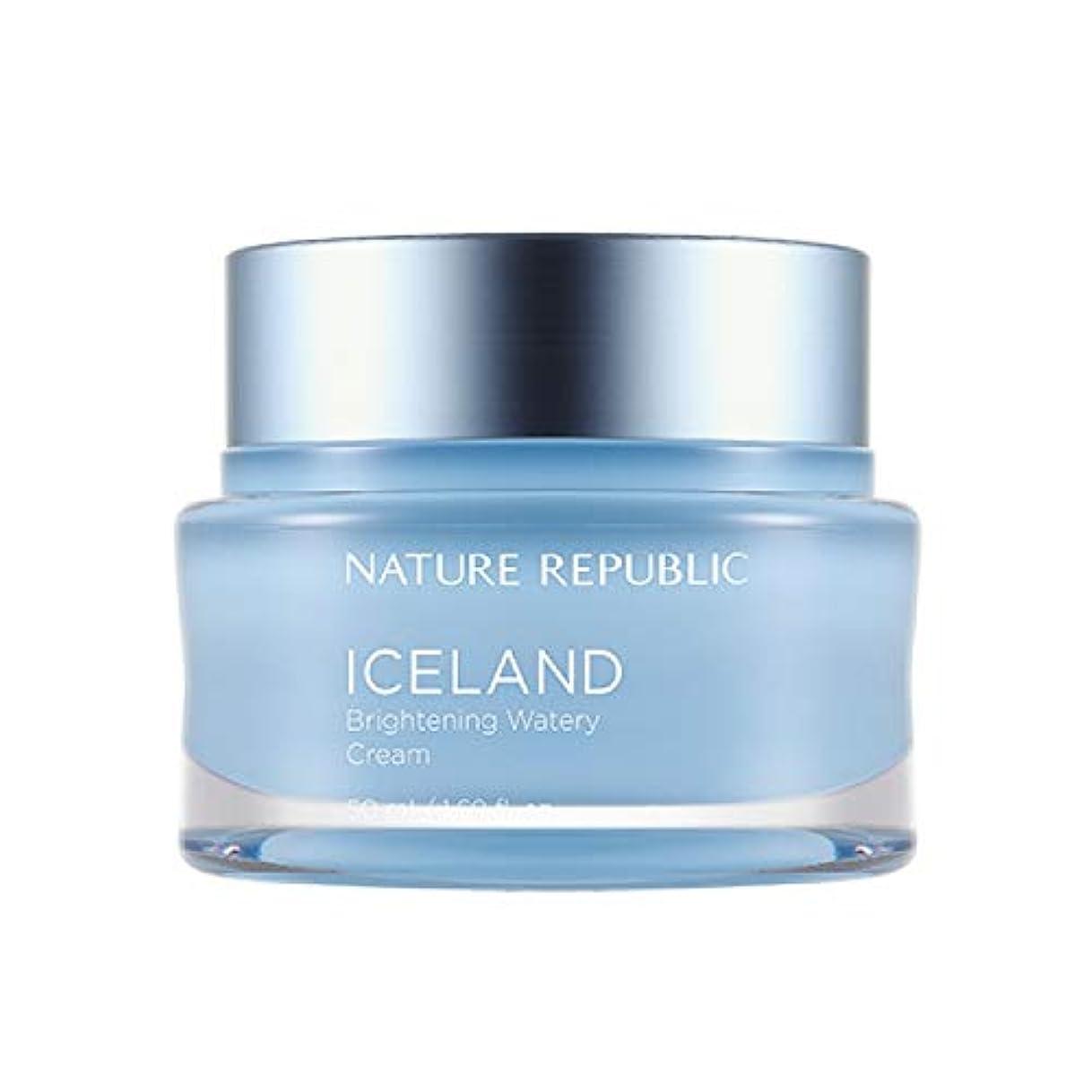 契約した観察バイソンネイチャーリパブリック(Nature Republic)アイスブライトニング水分クリーム 50ml / Iceland Brightening Watery Cream 50ml :: 韓国コスメ [並行輸入品]
