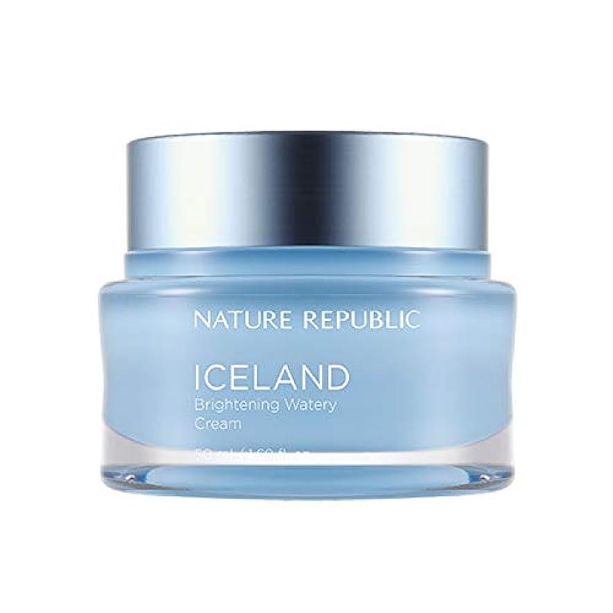 証書コンパクト極小ネイチャーリパブリック(Nature Republic)アイスブライトニング水分クリーム 50ml / Iceland Brightening Watery Cream 50ml :: 韓国コスメ [並行輸入品]