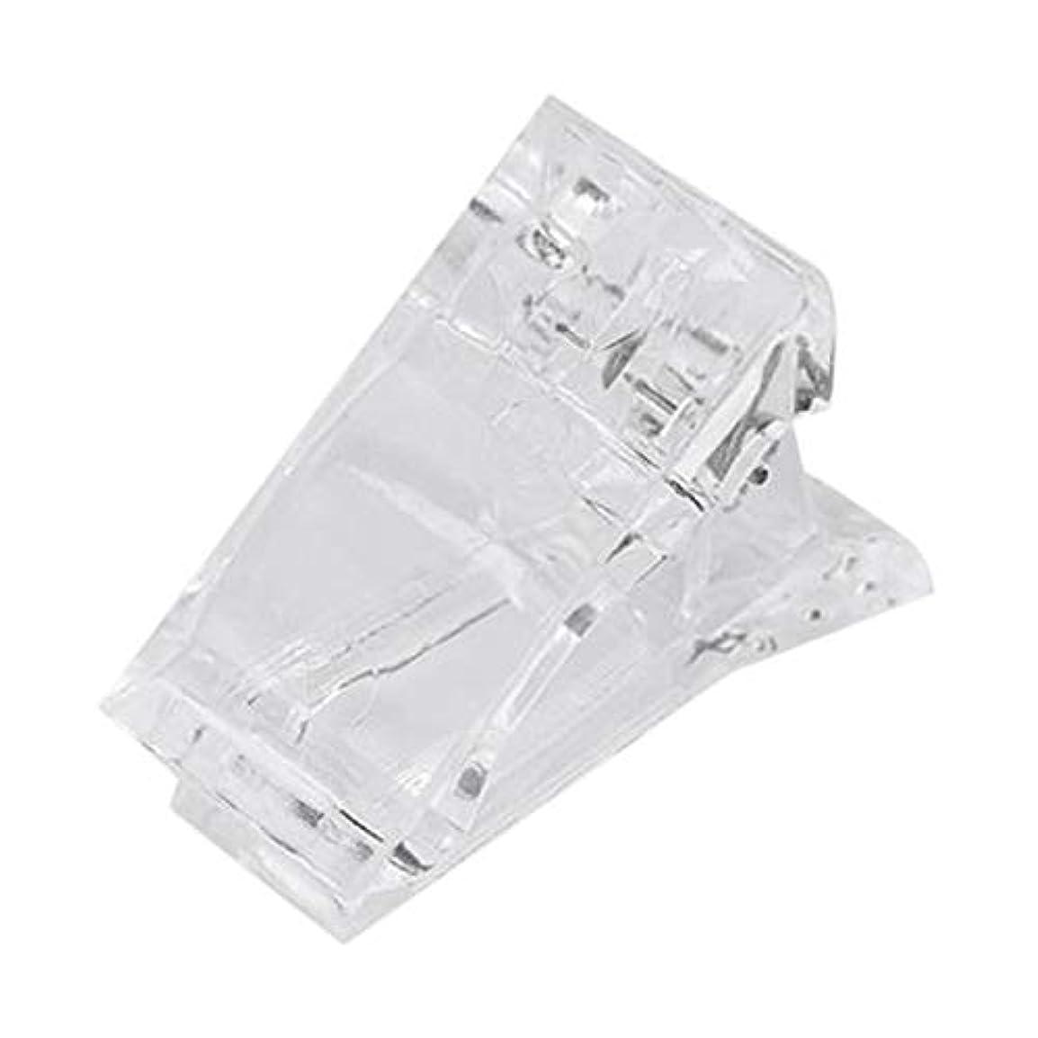 顔料弓戸惑うVaorwne ネイルのクリップ 透明指ポリクイック ビルディングジェルエクステンション ネイルアート マニキュアツール アクセサリー 偽ネイル