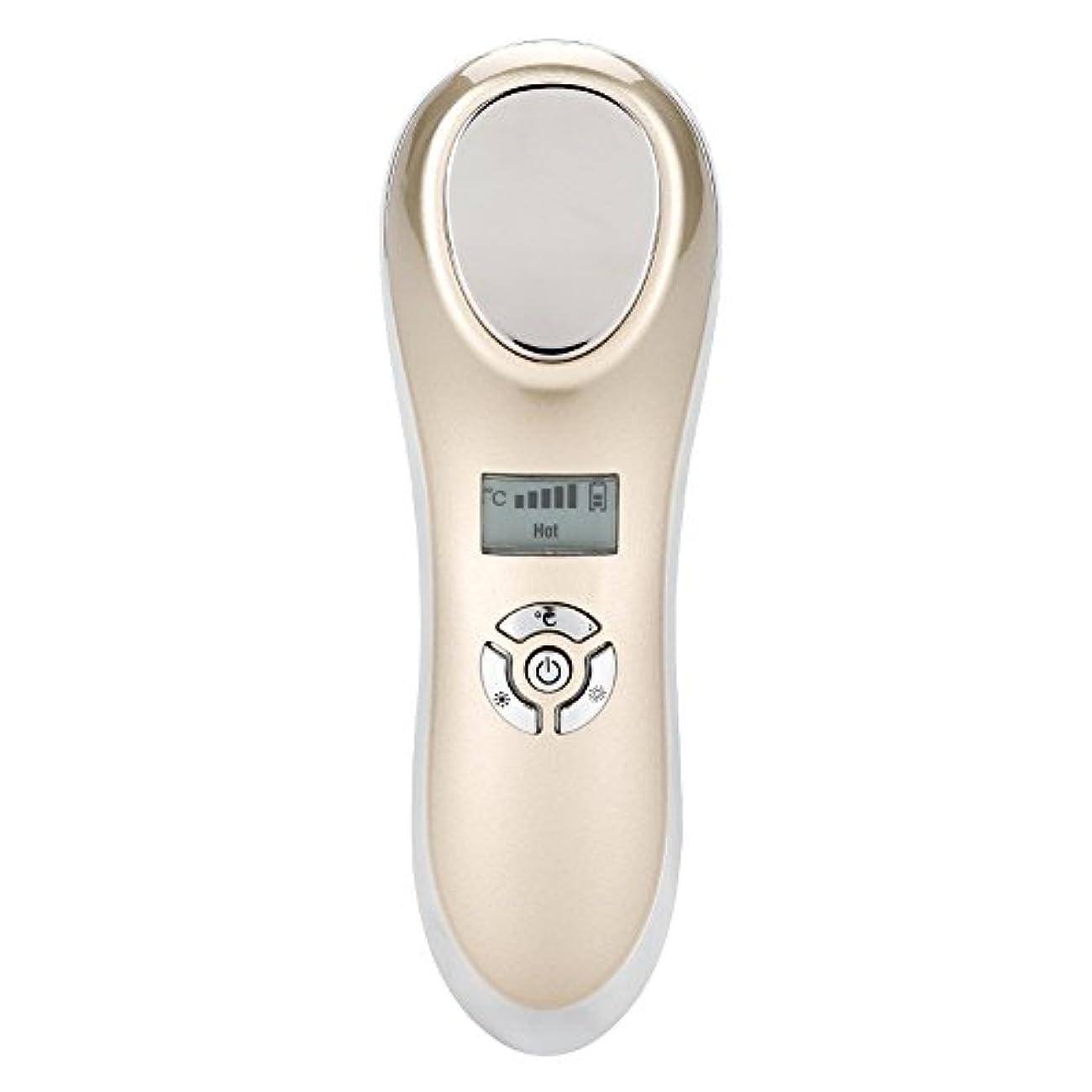 色合い味方早熟表面マッサージャー、熱い冷たいハンマーの皮を満たすUSBは装置表面美機械をきつく締めます(ゴールデン)