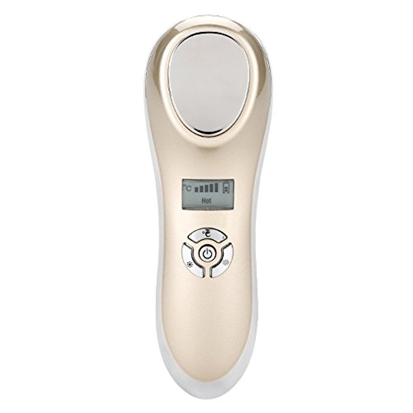 長々とエイリアンジョリー表面マッサージャー、熱い冷たいハンマーの皮を満たすUSBは装置表面美機械をきつく締めます(ゴールデン)