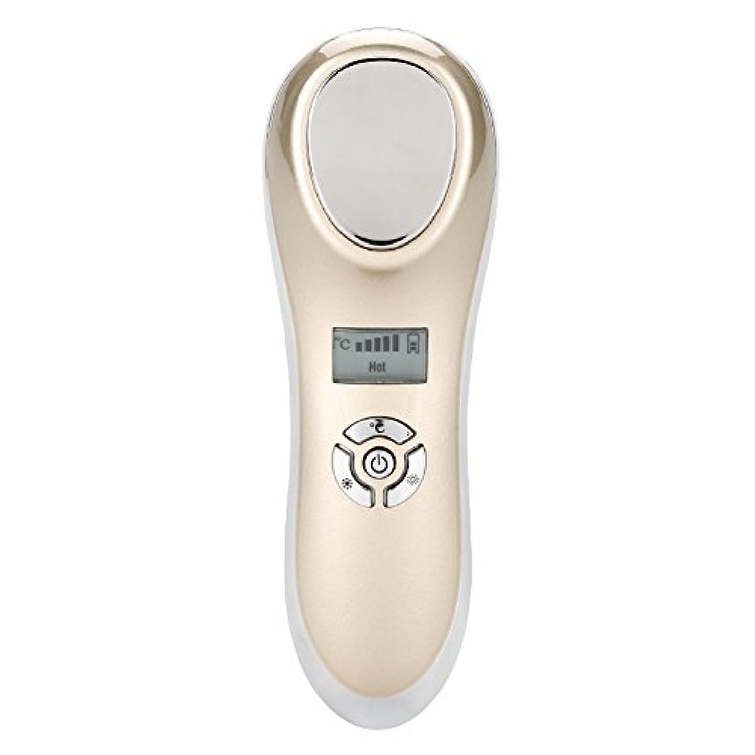 横たわる苦古くなった表面マッサージャー、熱い冷たいハンマーの皮を満たすUSBは装置表面美機械をきつく締めます(ゴールデン)
