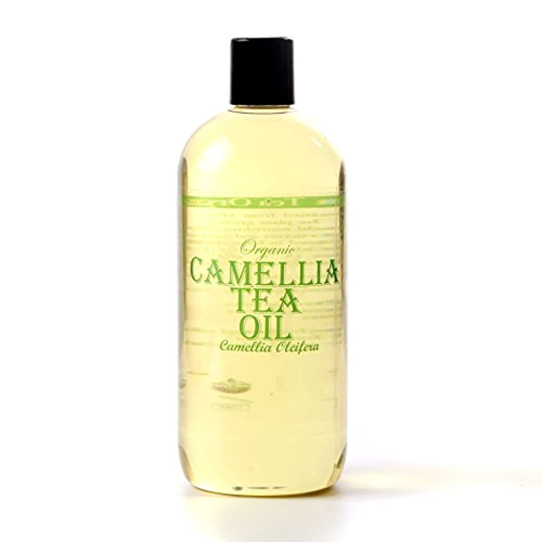 Mystic Moments | Camellia Tea Organic Carrier Oil - 5 Litres - 100% Pure