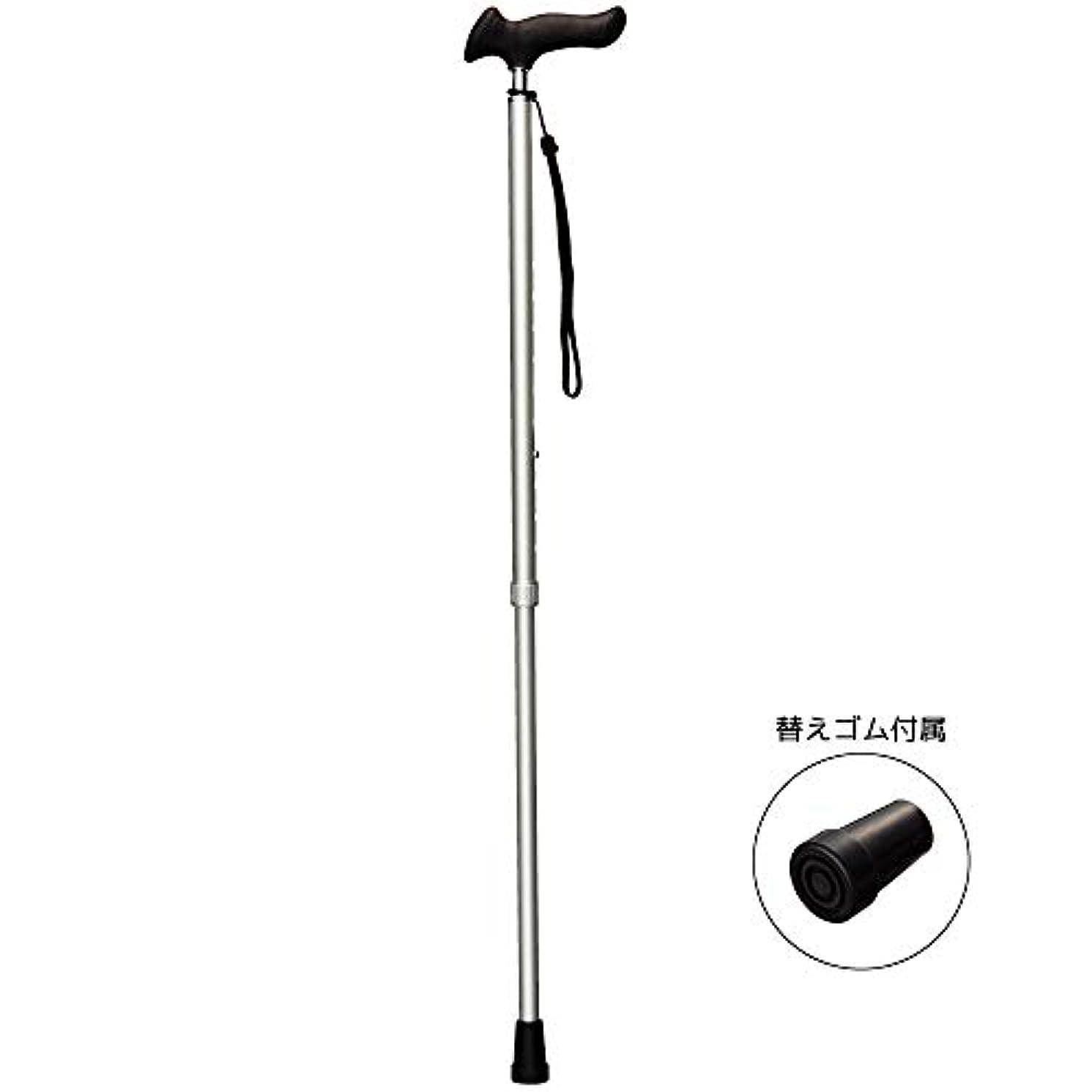 バルコニー安定名前SUNNY ピタグリップ 伸縮杖 樹脂製 ソフトグリップ (リッチシルバー)