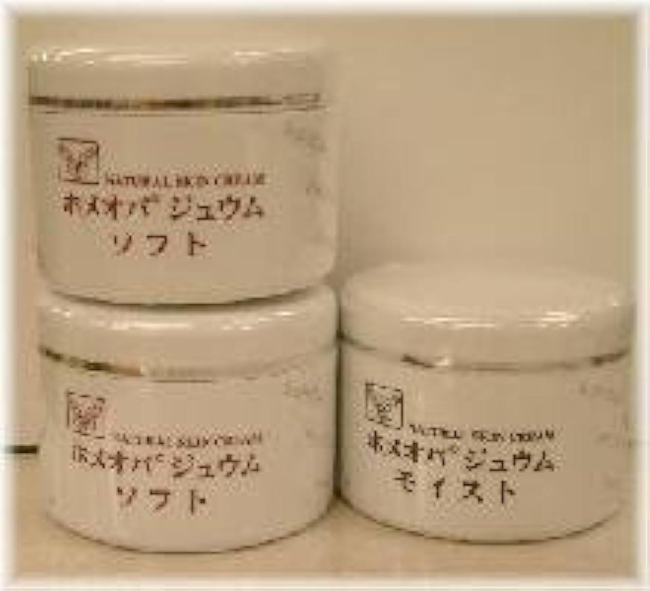 次へガジュマル貝殻ホメオパジュウム スキンケア商品3点 ¥10500クリームソフト2個+クリームモイスト