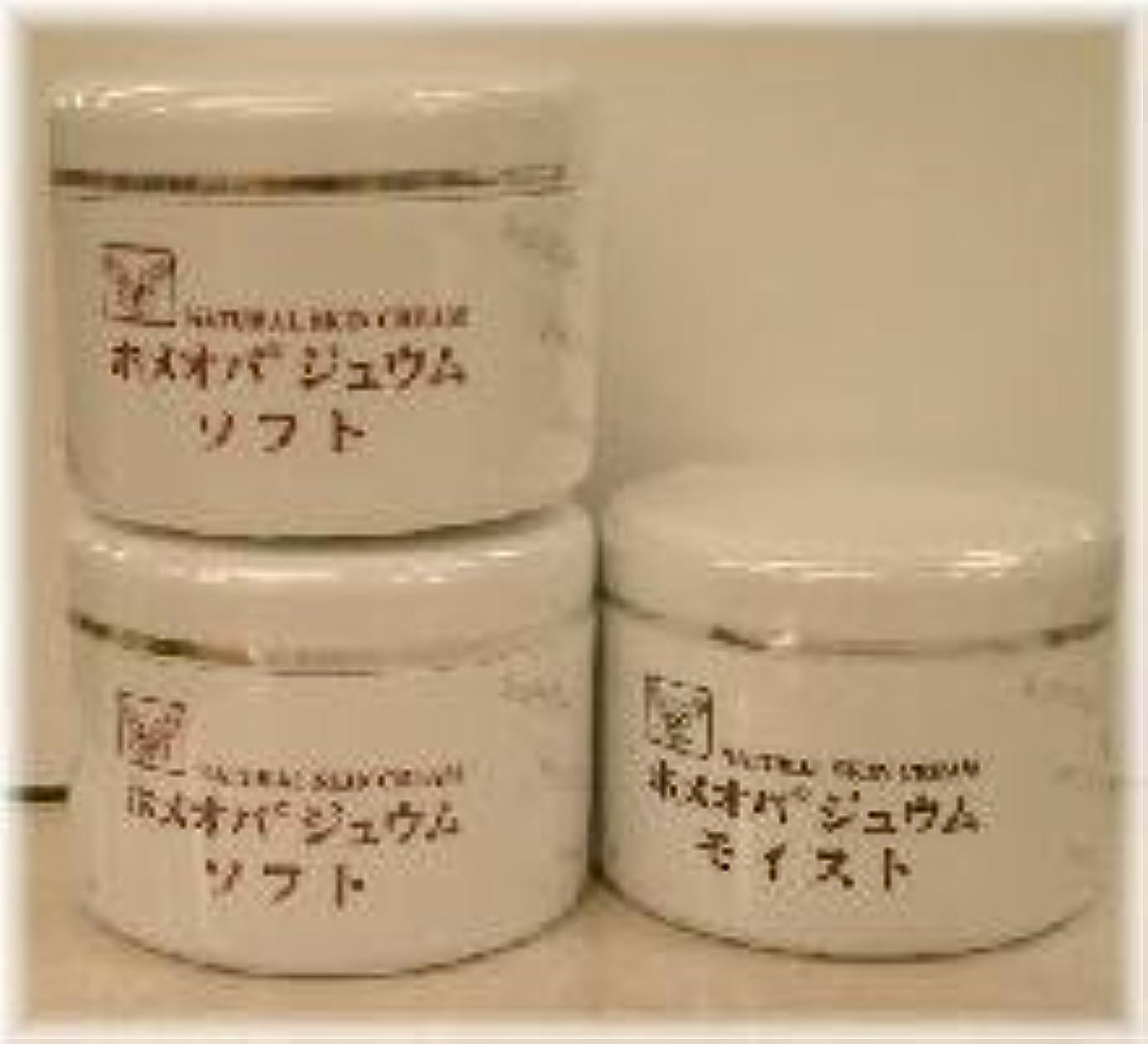 シーン保守的スキッパーホメオパジュウム スキンケア商品3点 ¥10500クリームソフト2個+クリームモイスト