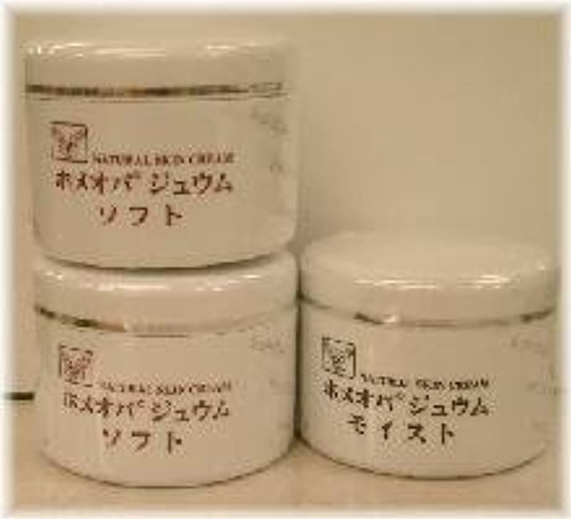 兵士惨めな体ホメオパジュウム スキンケア商品3点 ¥10500クリームソフト2個+クリームモイスト
