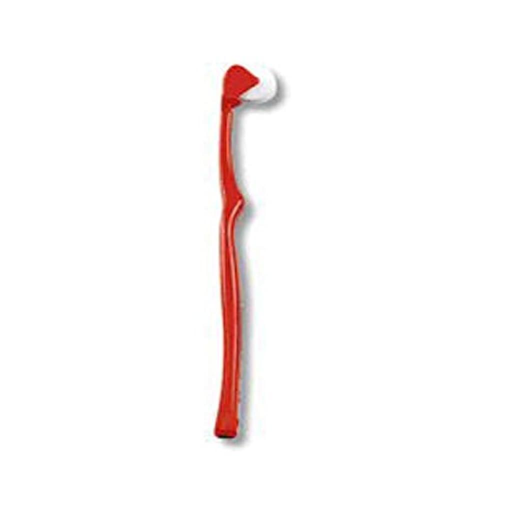 分析広範囲に従うコロコロブラシ コロコロ歯ブラシ レッド(赤)単色