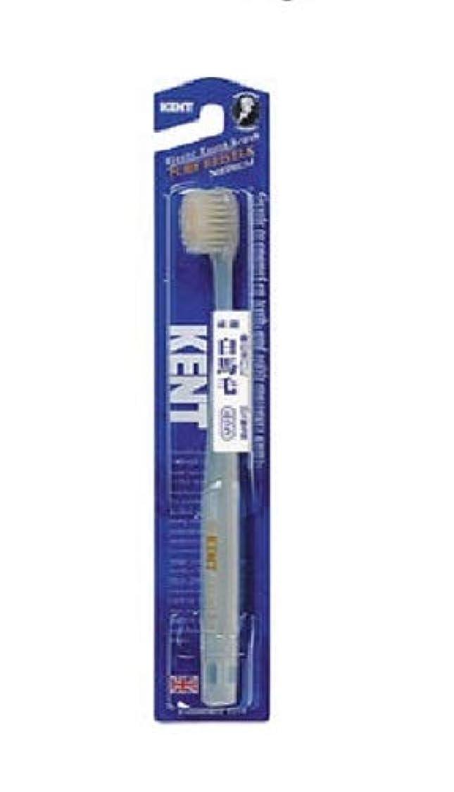 アンタゴニスト息苦しいトークKENT 白馬毛歯ブラシ ふつう コンパクトヘッド KNT-1232