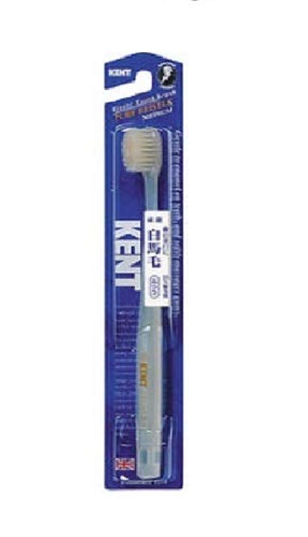 ドラムご注意冷酷なKENT 白馬毛歯ブラシ ふつう コンパクトヘッド KNT-1232