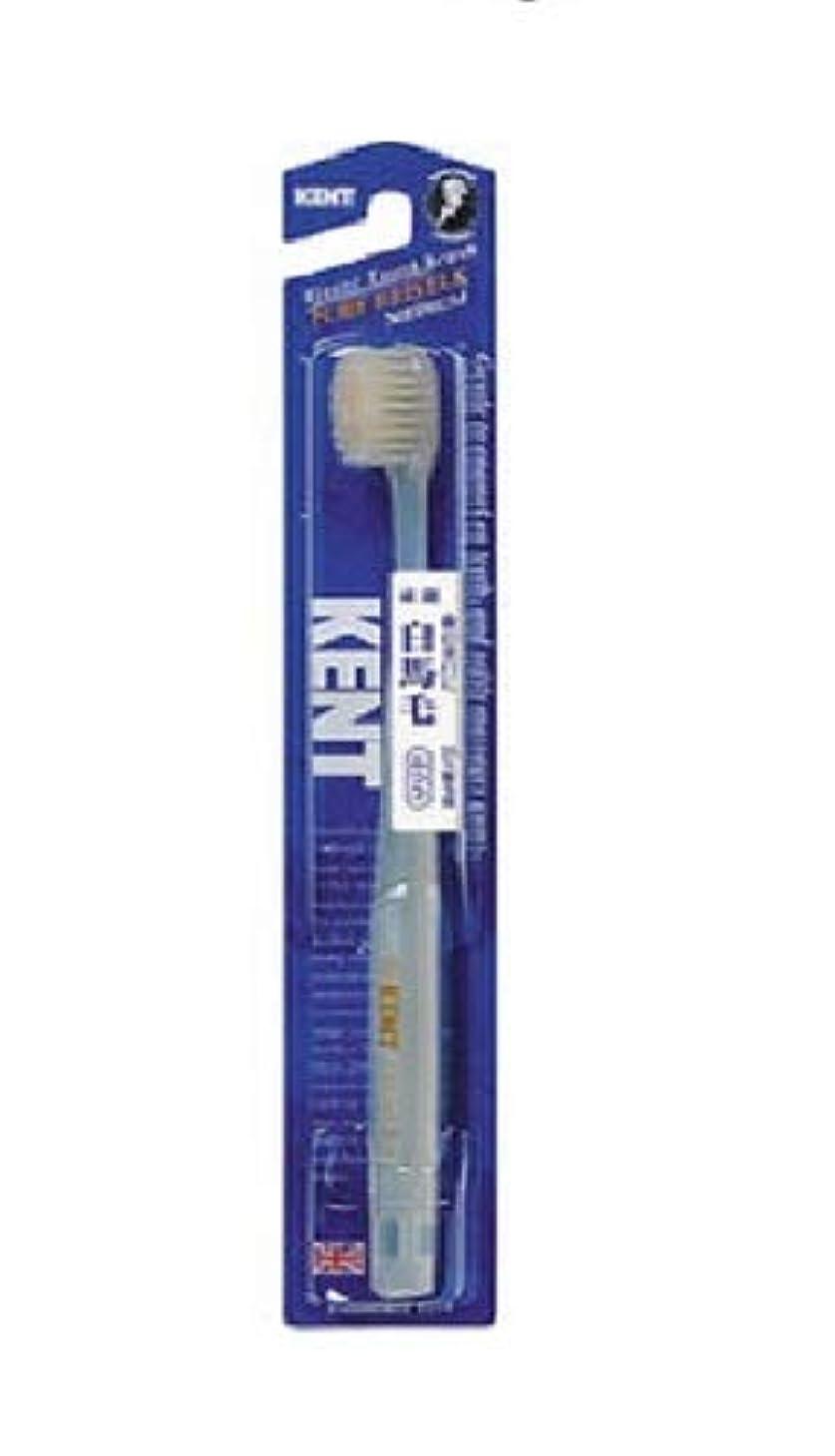 冷ややかな距離閉じ込めるKENT 白馬毛歯ブラシ ふつう コンパクトヘッド KNT-1232