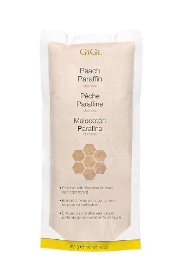 憲法ご覧ください気球GiGi Peach Paraffin Wax 453g by Gigi