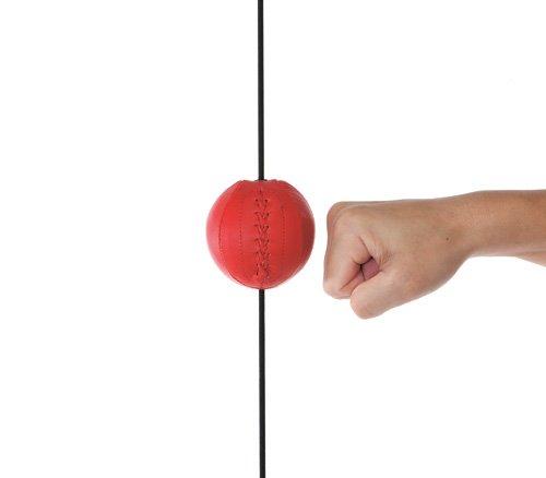 ウイニング Winning ボクシング パンチングボール ビョンビョンボール SB-9000