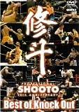 修斗 THE 20th ANNIVERSARY Best of Knock Out[DVD]