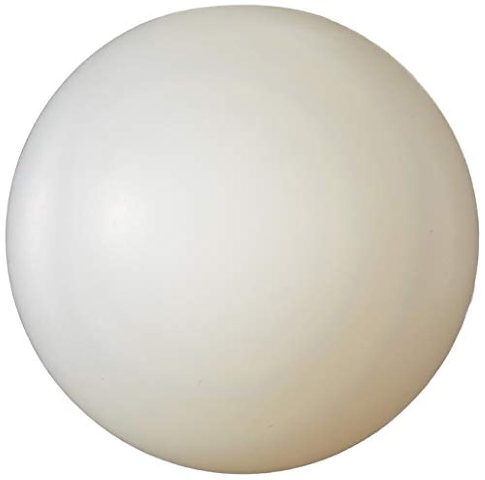 アズワン ナイロン球 φ12.7mm 25個入 /1-4447-01