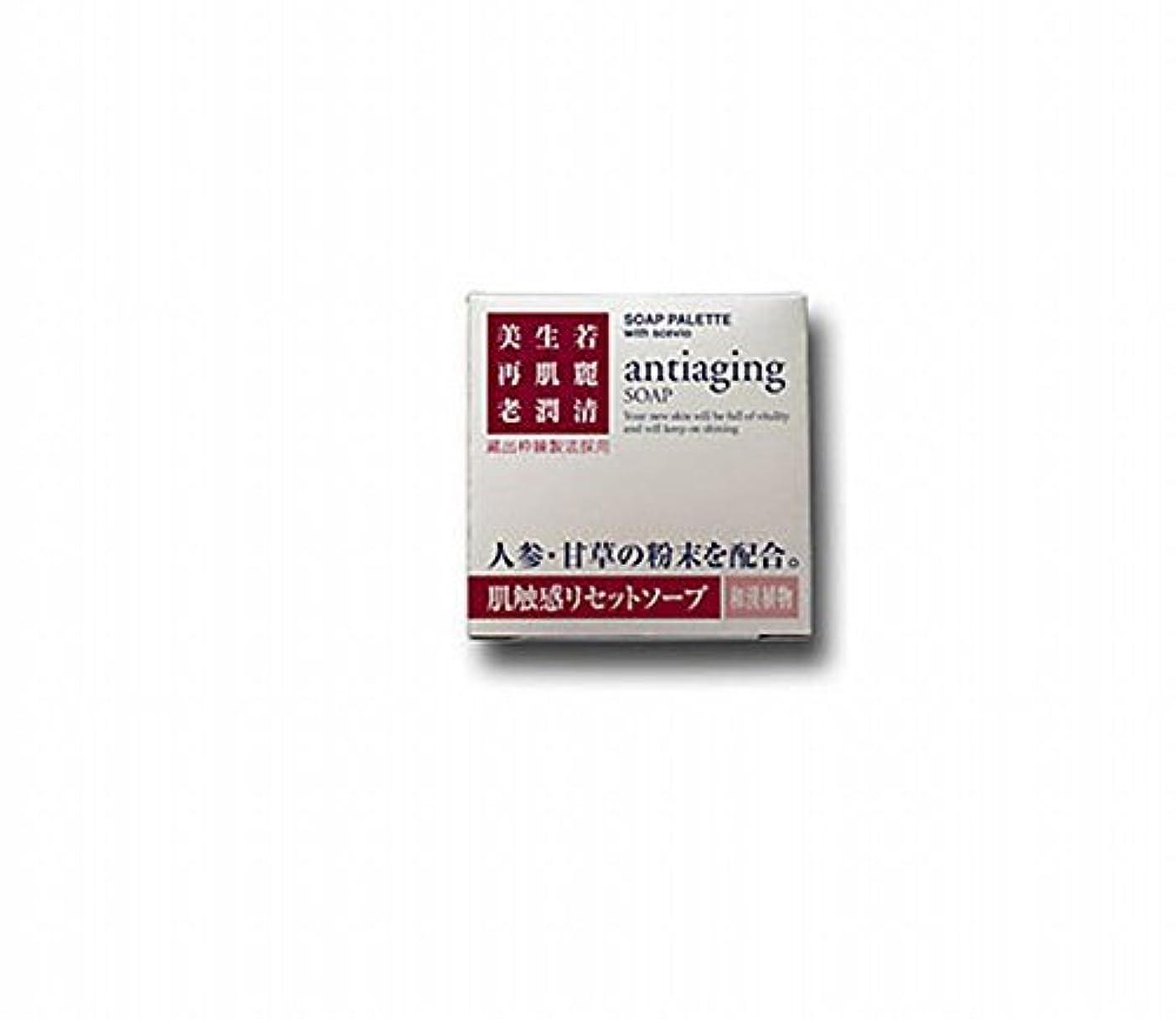 手錠ミシンノベルティビバニーズ スセビオ ソープパレット 【肌触感リセットソープ】 100g