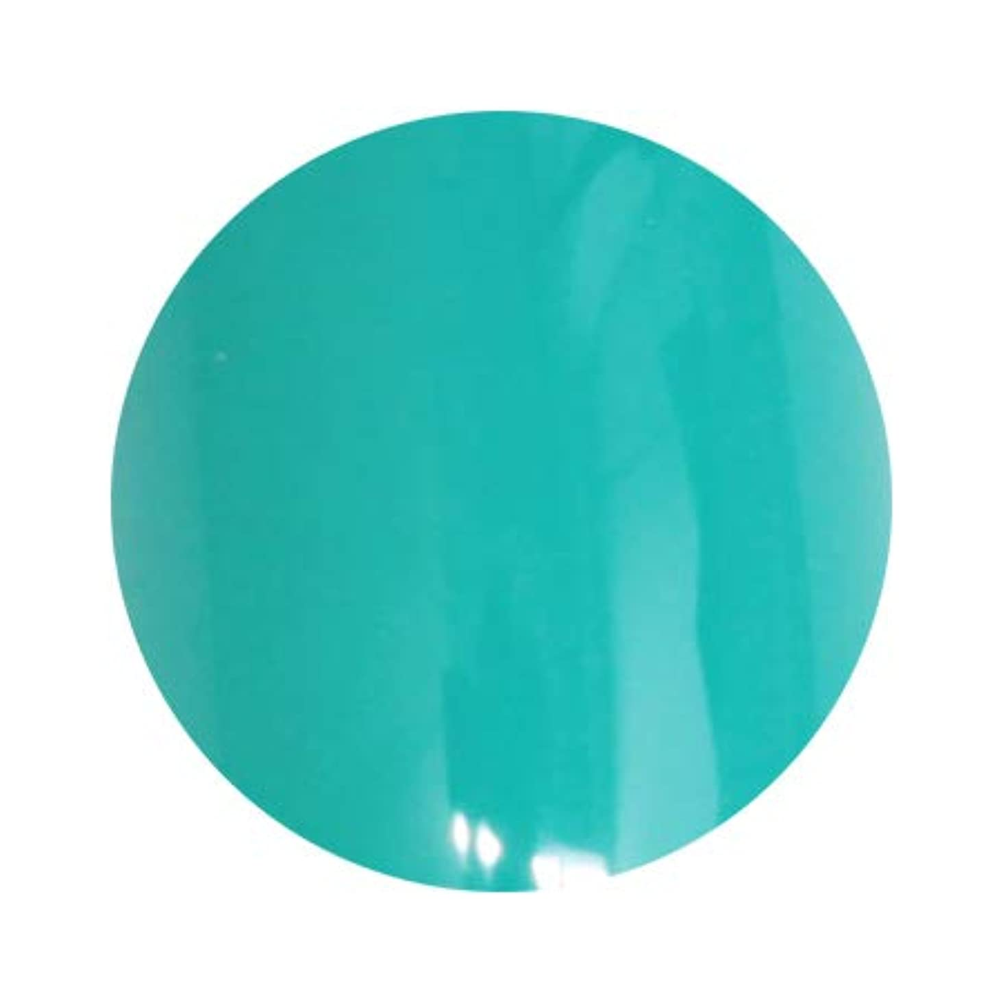 シロナガスクジラ認識星LUCU GEL ルクジェル カラー GRM12 ネイテュブグリーン 3.5g