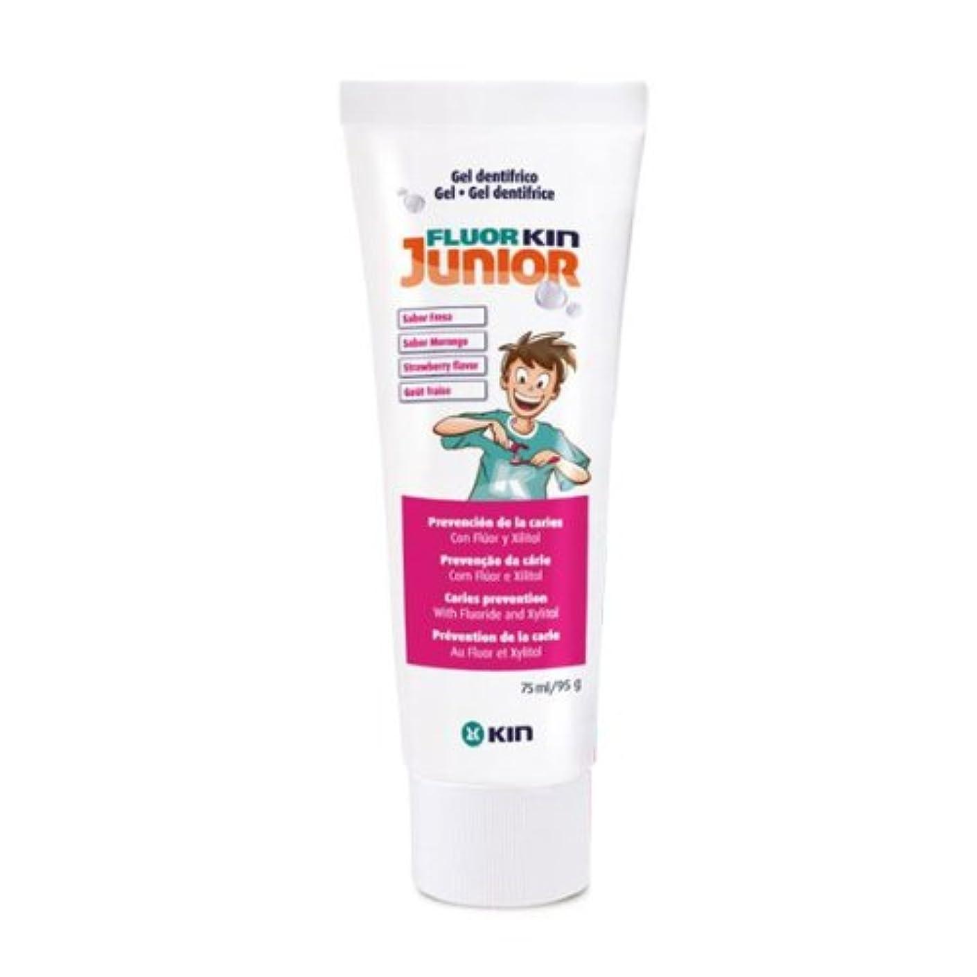 課税備品窓を洗うKin Fluor Kin Junior Strawberry Dental Gel 75ml [並行輸入品]
