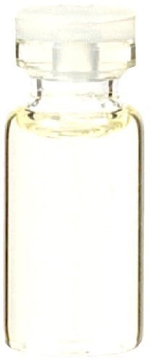 エンティティかご反抗生活の木 ペパーミント 50ml