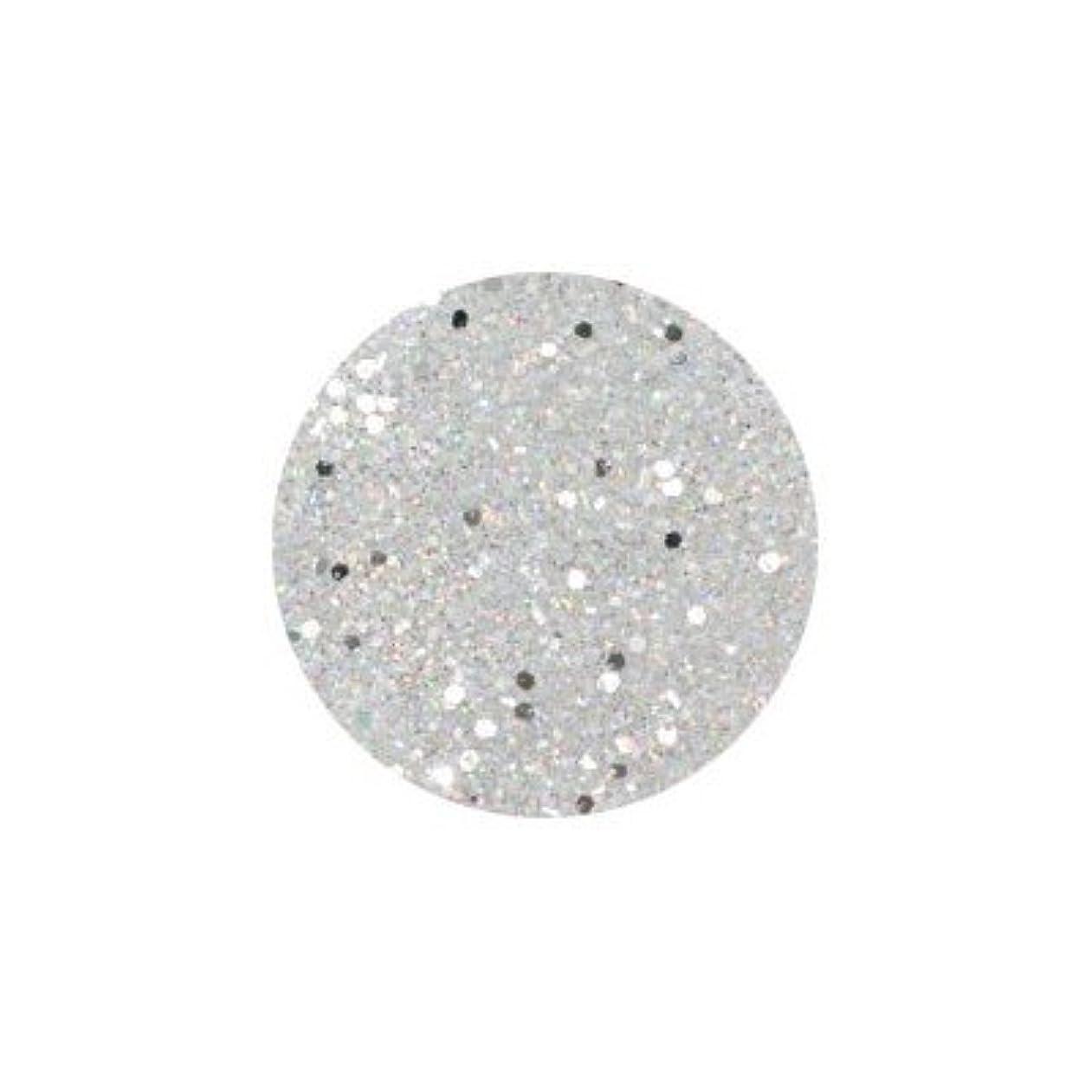 エロチックフィードしばしばネイルアートジュエリー APN‐091 ラメミックス ホワイト
