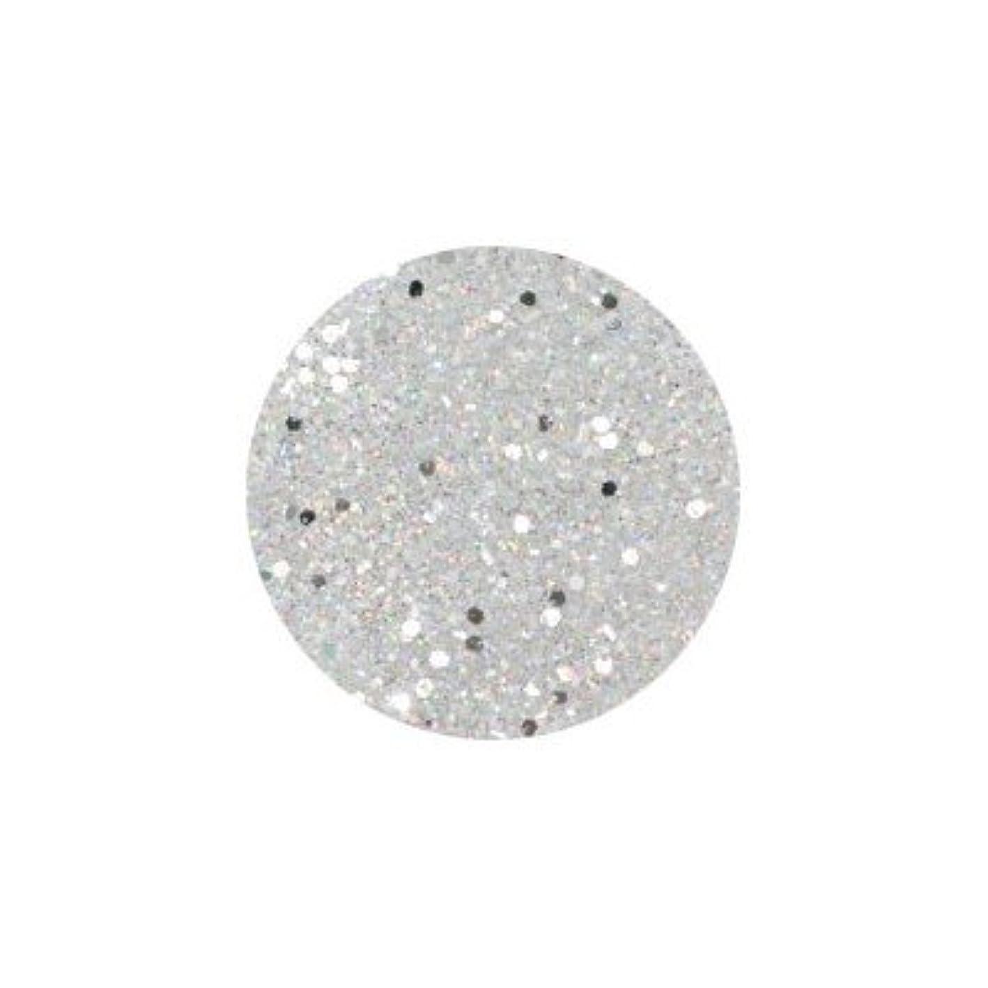 四分円推定するコインランドリーネイルアートジュエリー APN‐091 ラメミックス ホワイト