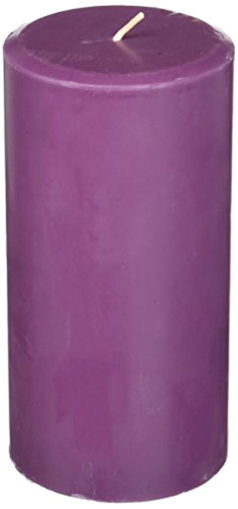 カエル優先実験室Northern Lights Candles Plum Orchid &ダリアFragranceパレットPillar Candle、3 x 6