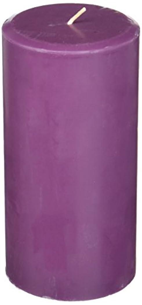 ポーズる気分が悪いNorthern Lights Candles Plum Orchid &ダリアFragranceパレットPillar Candle、3 x 6