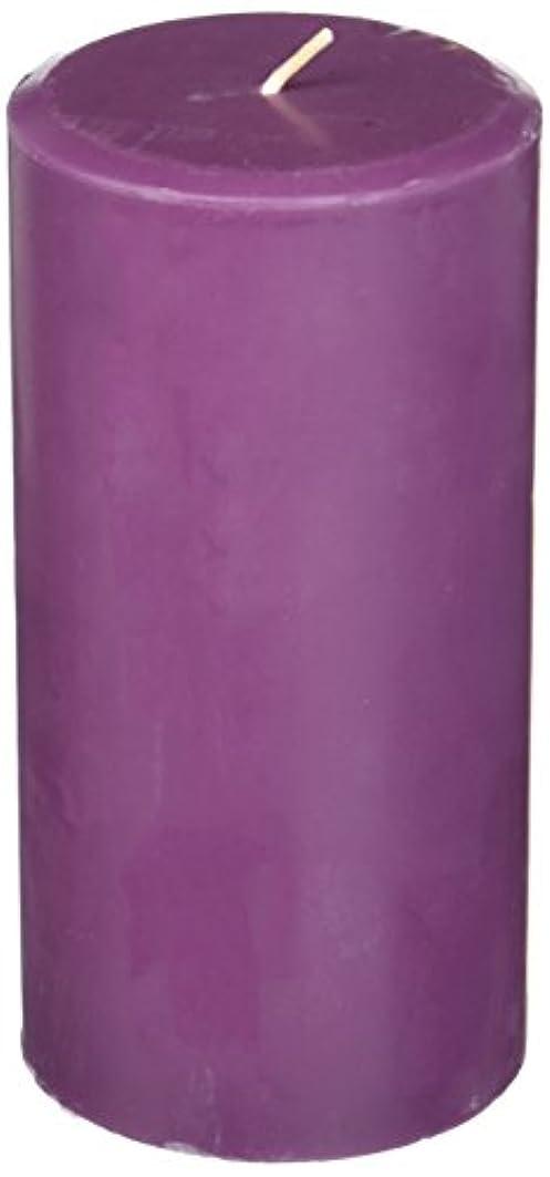 保存会う請求Northern Lights Candles Plum Orchid &ダリアFragranceパレットPillar Candle、3 x 6