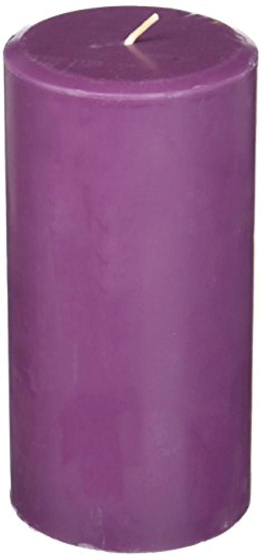 アスレチック仲良しバラバラにするNorthern Lights Candles Plum Orchid &ダリアFragranceパレットPillar Candle、3 x 6