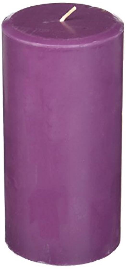 取り扱いスリーブシネマNorthern Lights Candles Plum Orchid &ダリアFragranceパレットPillar Candle、3 x 6