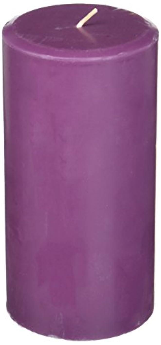 有益なエレクトロニック新着Northern Lights Candles Plum Orchid &ダリアFragranceパレットPillar Candle、3 x 6