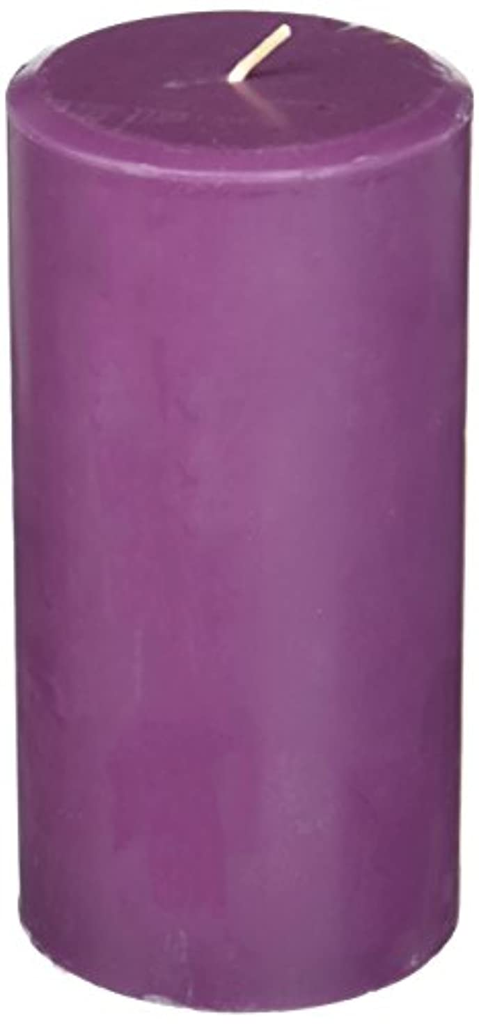 Northern Lights Candles Plum Orchid &ダリアFragranceパレットPillar Candle、3 x 6