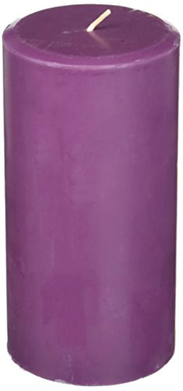 有力者炭水化物狐Northern Lights Candles Plum Orchid &ダリアFragranceパレットPillar Candle、3 x 6
