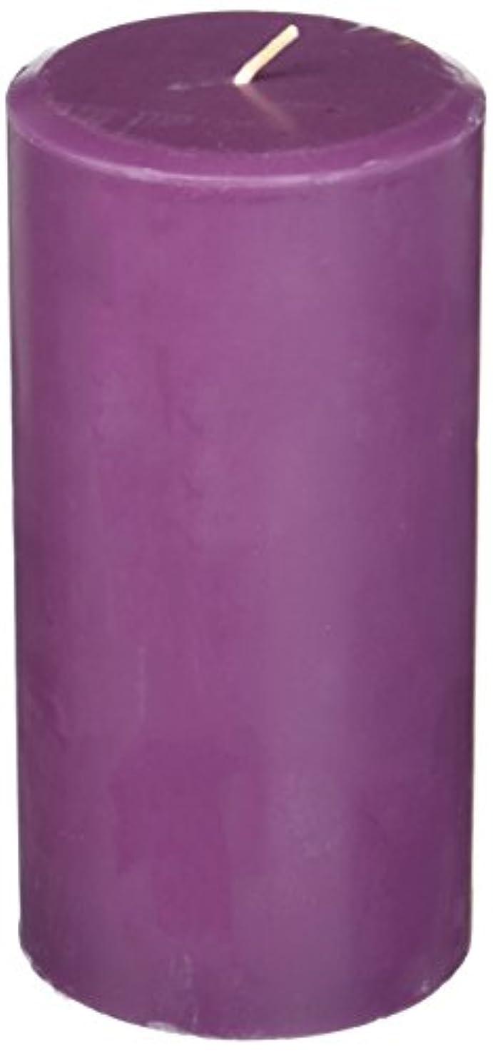 作ります同志マサッチョNorthern Lights Candles Plum Orchid &ダリアFragranceパレットPillar Candle、3 x 6