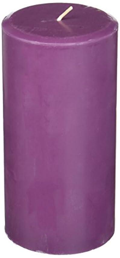 慢性的動的追い払うNorthern Lights Candles Plum Orchid &ダリアFragranceパレットPillar Candle、3 x 6