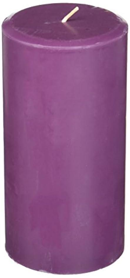 つぼみ静かな学校の先生Northern Lights Candles Plum Orchid &ダリアFragranceパレットPillar Candle、3 x 6