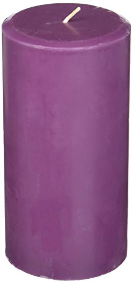 メモ換気正気Northern Lights Candles Plum Orchid &ダリアFragranceパレットPillar Candle、3 x 6