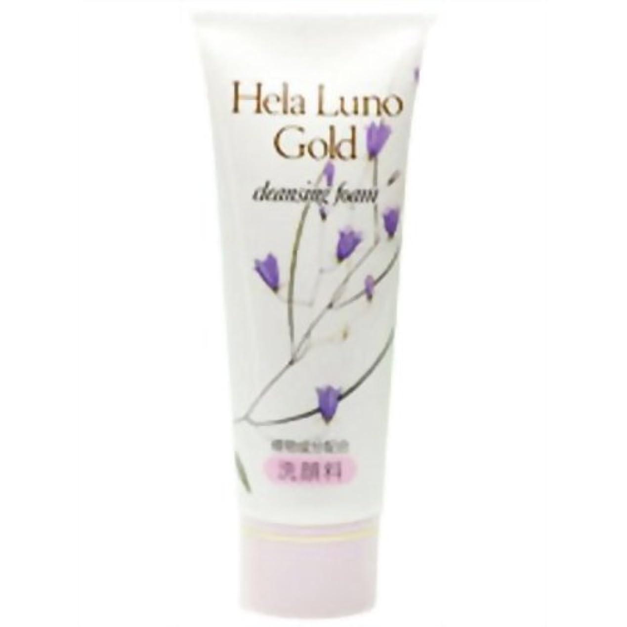 成功した政治家乳製品大高酵素 ヘーラールーノゴールド クレンジングフォーム 120g
