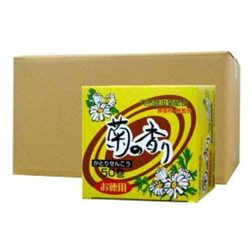 天然除虫菊配合 菊の香り かとりせんこう お徳用50巻×16個セット
