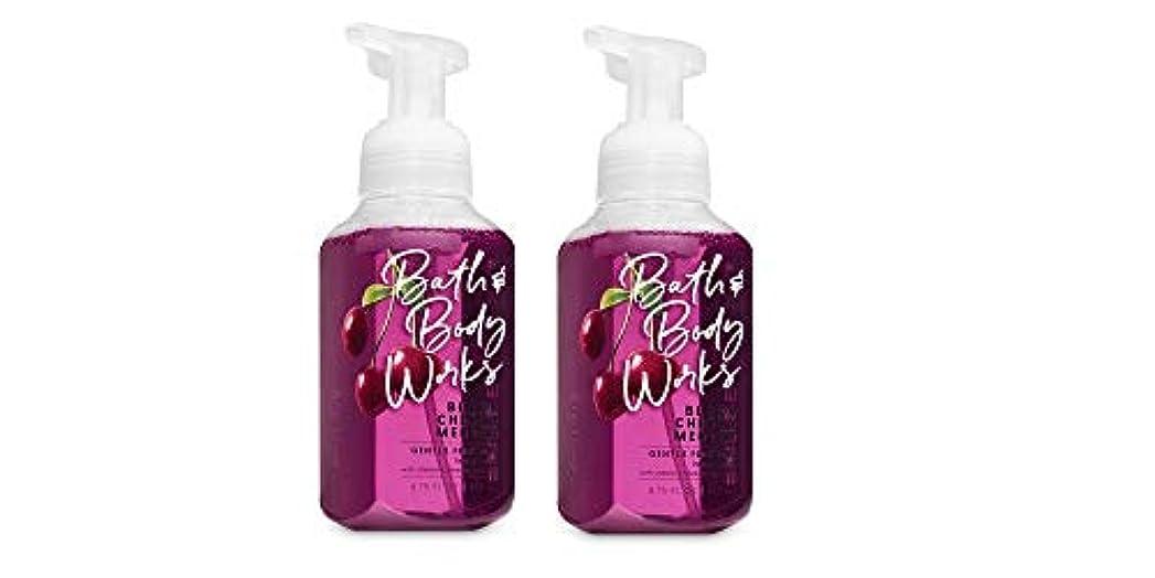 警告する百科事典スーツケースバス&ボディワークス ジェントル フォーミング ハンドソープ Black Chery MERLOT Gentle Foaming Hand Soap [並行輸入品]