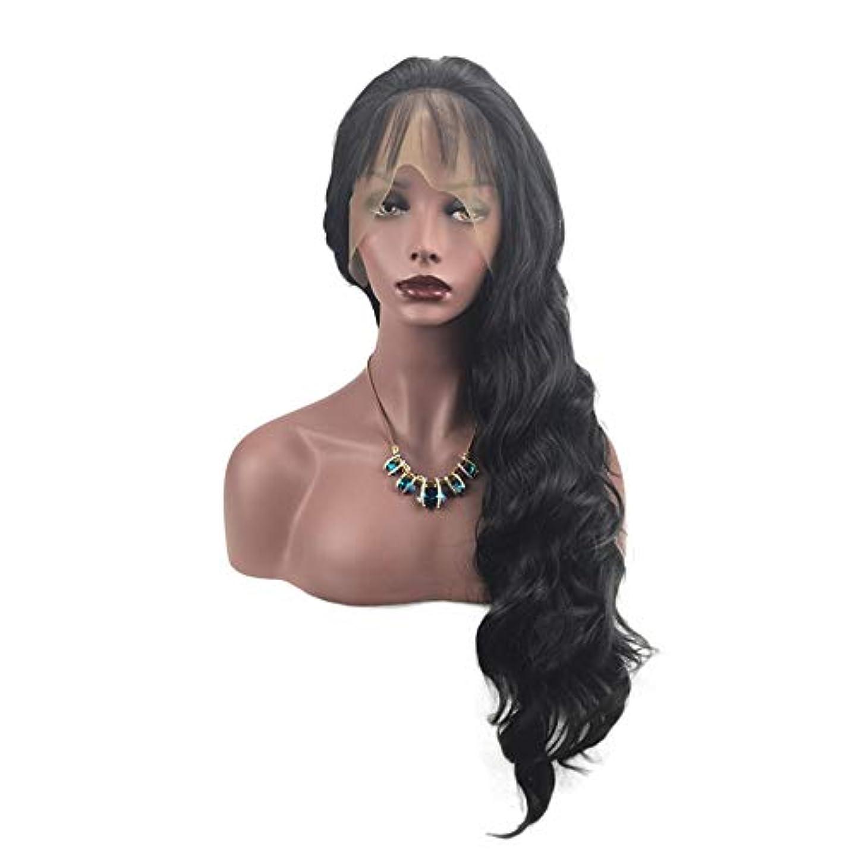 ボーダー頼る令状HAILAN HOME-かつら 手織りウィッグ女性のフロントレースのどれフェイスタイプナチュラルグラフィック換気のための合成想起カーリーヘアウィッグセット