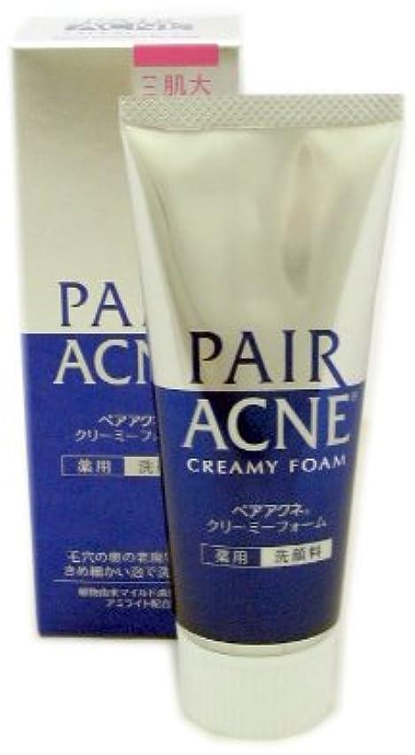 照らす文化によるとペアアクネ クリーミーフォーム 薬用洗顔料 80g x 3本セット