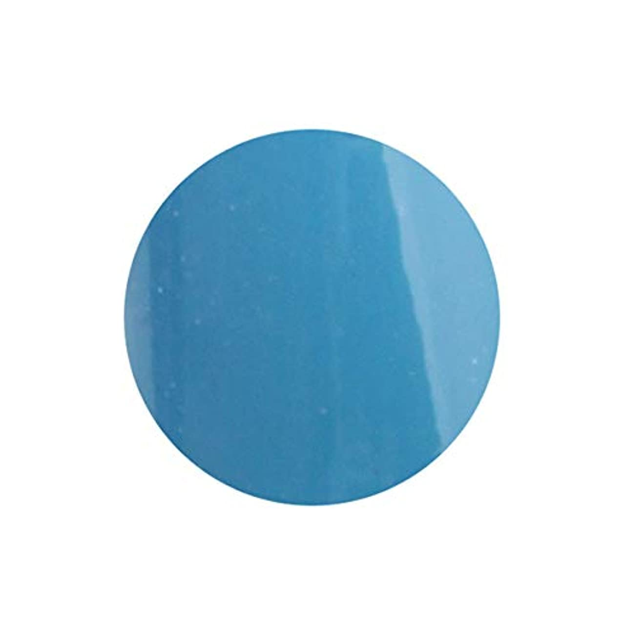 バッグ顔料免除するSHAREYDVA シャレドワ+ ネイルカラー No.35 ターコイズブルー