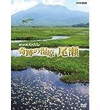 NHKスペシャル 奇跡の湿原 尾瀬[DVD]